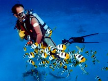 Conseils plongée sous-marine